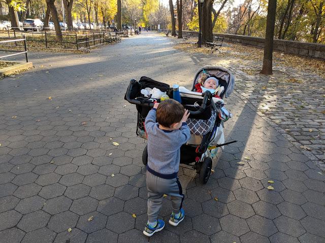 Finding Stroller Love
